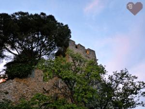Villa Noailles 29ème édition Festival mode et photographie Hyères 2014