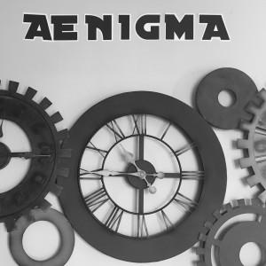 avis-aenigma-la-garde-toulon-1