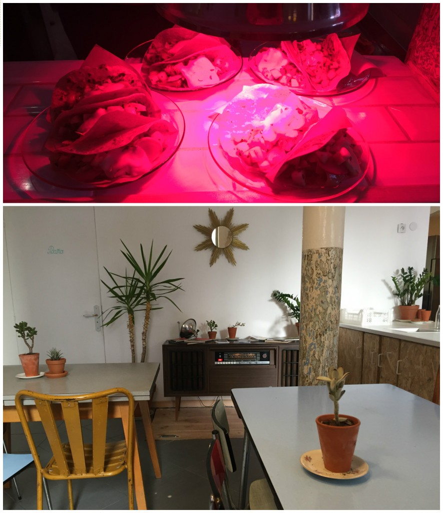 restaurant-mexicain-toulon-santa-rosalia-avis-blog-food-7