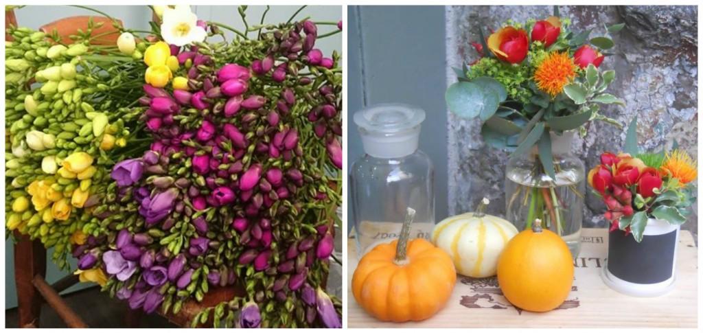 composition-fleurs-toulon