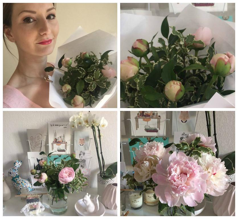 fleurs-pivoines-roses-mesjoliesfleurs-toulon