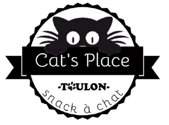 cat-place-bar-chat-toulon-projet