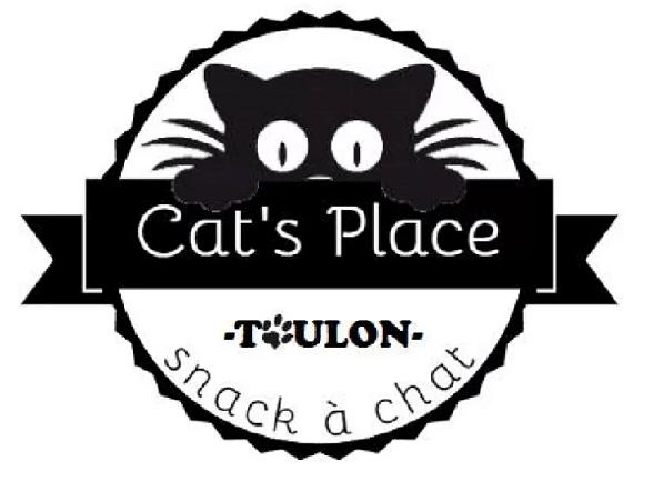 cat-place-bar-chat-toulon-projet
